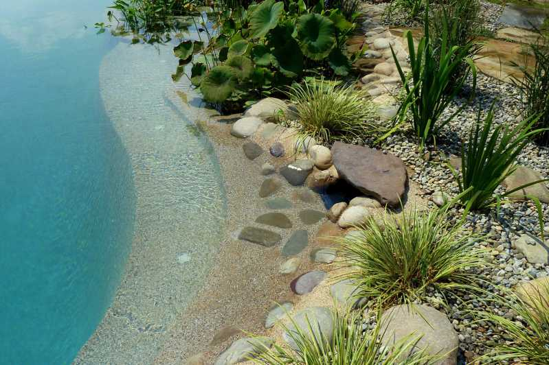Natural Pools Gallery